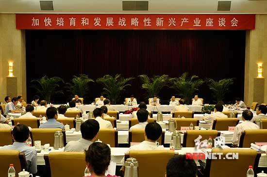 湖南已形成基本成熟的发展战略性新兴产业规划和决定文本。