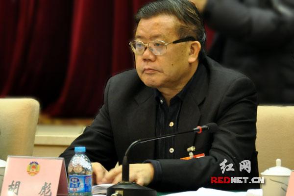 湖南省政协主席胡彪参加联组讨论,认真听取委员意见