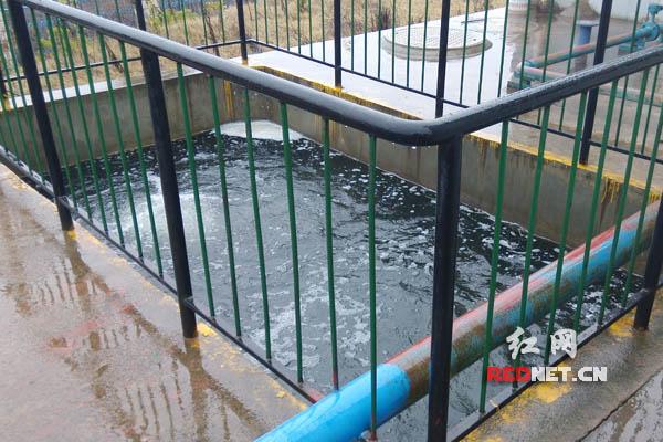 长沙某企业污水处理池。